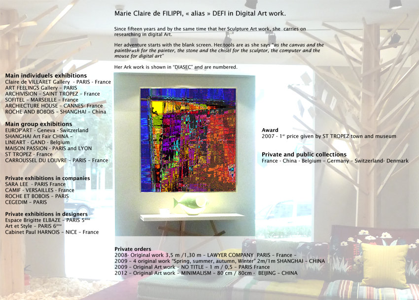 BIOGRAPHIE-Art Numérique-ANGLAIS-DEFI-Internet-2012